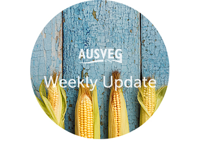 AUSVEG Weekly Update – 12 September 2017