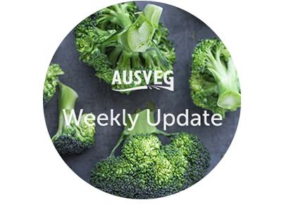 AUSVEG Weekly Update – Tuesday 17 October 2017