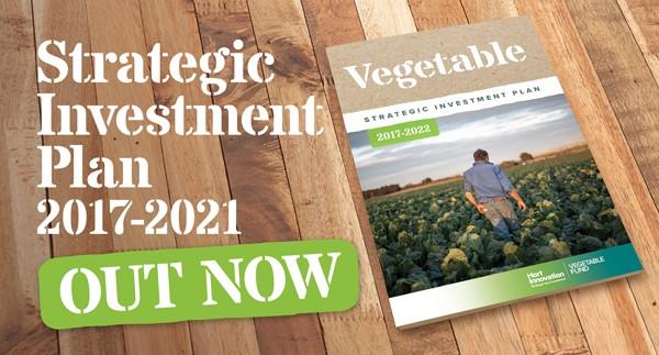 SIP for vegetable growers released by Hort Innovation   AUSVEG