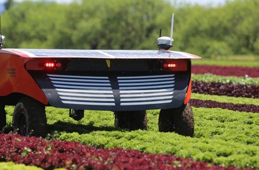 Levy-funded project shows benefits of automation for hort industry