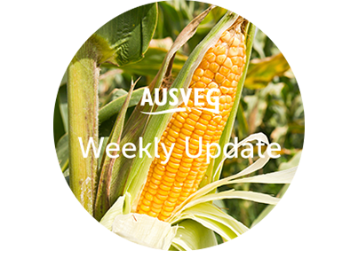AUSVEG Weekly Update – 13 March 2018