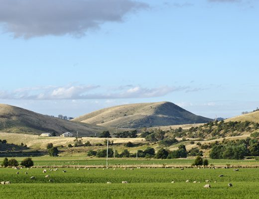 Agfest to showcase agriculture and machinery in Tasmania