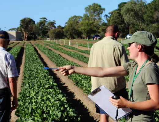 Biosecurity funding will help protect Australia's borders from harmful pests and diseases