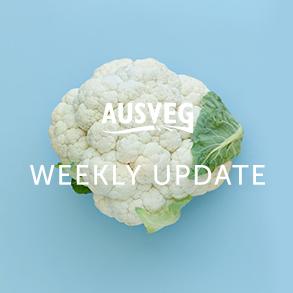 AUSVEG Weekly Update – 24 August 2021