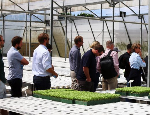 Don't miss the application deadline for the Masterclass in Horticultural Business!
