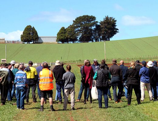 Forthside Open Day focusses on crop and soil health for greater productivity