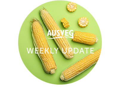 AUSVEG Weekly Update – 5 February 2019
