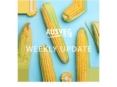 AUSVEG Weekly Update – 01 September 2020