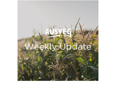AUSVEG Weekly Update – 18 June 2019