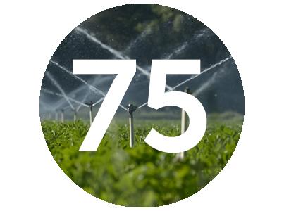 Vegenotes #75