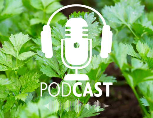 Podcast: A ripper solution to control erosion