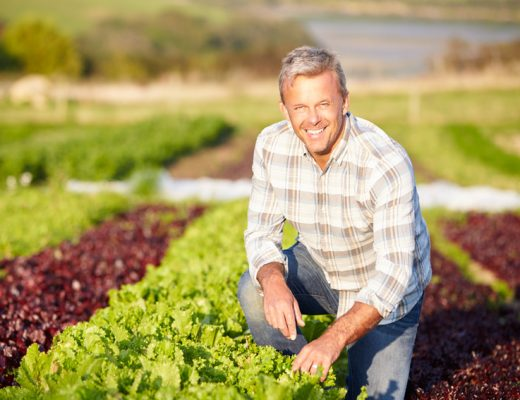 Woolworths reaffirms its support for the Australian vegetable industry