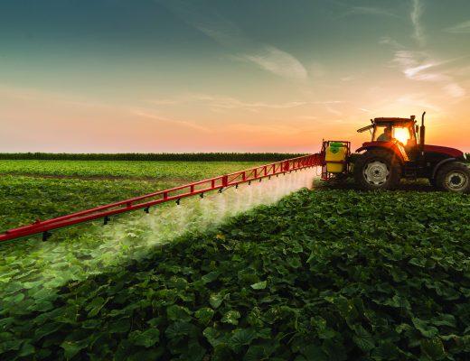 Veg industry SARP reports