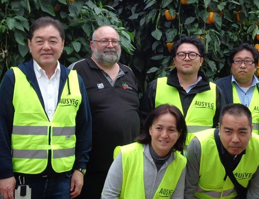 Assisting vegetable growers to achieve their export goals