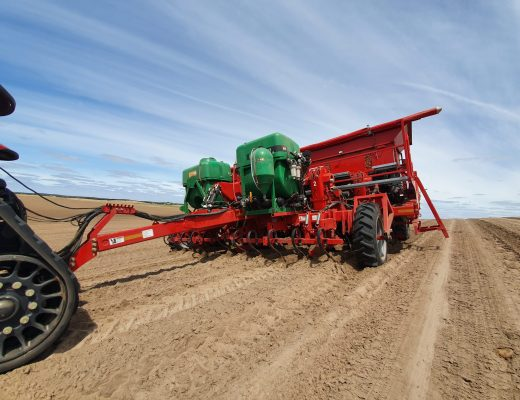 Efficiency the key to new planting style