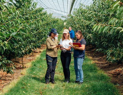 2021Masterclass in Horticultural Business: Apply now!