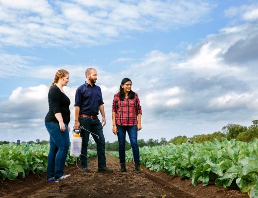 Overcoming the ongoing pest and disease threats in horticultural crops