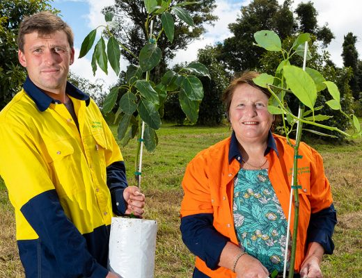 Woolworths backs organic growers with $850,000 in grants from Organic Growth Fund