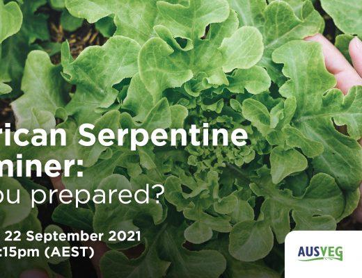 You're invited: 'American Serpentine Leafminer: Are you prepared?' webinar