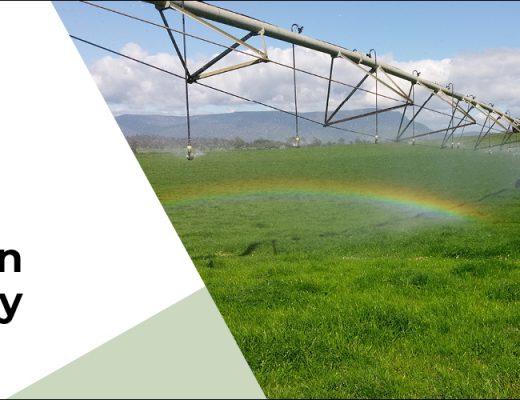 Learn about the IrriPasture toolat TIA's irrigation field days, TAS
