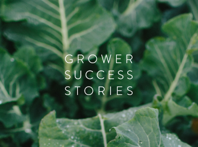 Vegetable Grower Success Stories 2017
